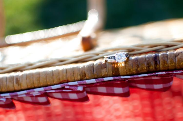 Elaine Eric Cherry Blossom Tidal Basin Engagement Session Washington DC Wedding Photographer photo
